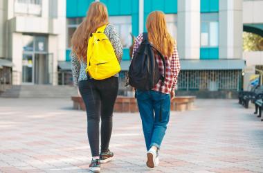Учні зможуть пройти ДПА за власним бажанням