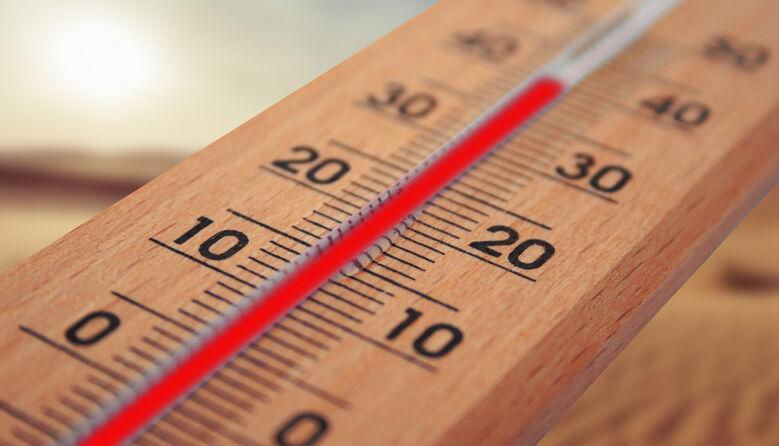 Прибрати шкільну територію у +40°C: терміновий наказ від управління освіти