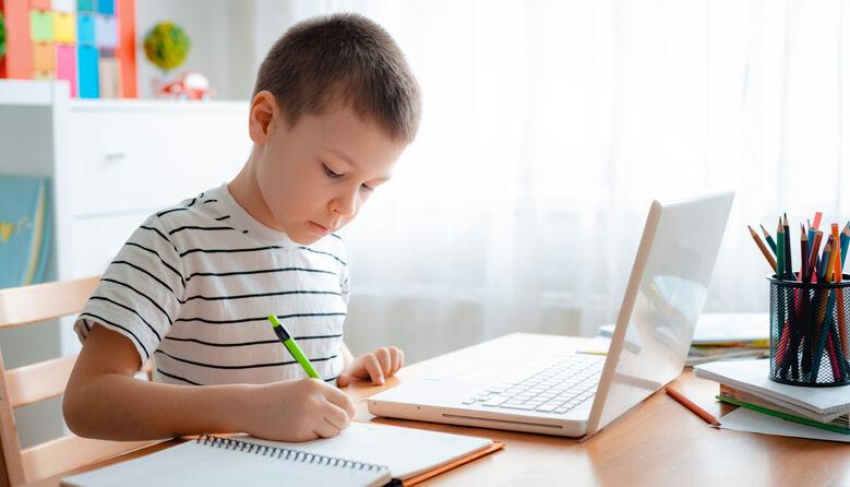 """Учитель не зобов'язаний пояснювати матеріал ще й на """"дистанційці"""" після основної роботи, – блогерка"""