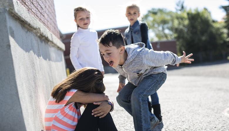 Покарання за цькування може призвести ще до гіршого булінгу: правозахисник про нові правила обліку дітей-булерів