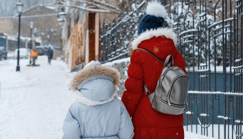 Через складні погодні умови школам рекомендовано перейти на дистанційний режим: лист МОН