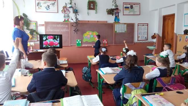 Багато шкіл не стануть справжніми гімназіями, – експерт про трансформацію закладів освіти