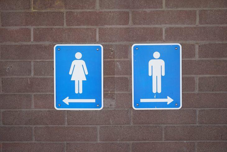 В уряді планують вирішити проблему шкільних туалетів