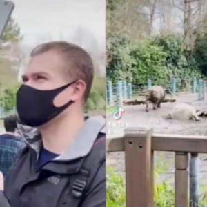 Пінгвіни й носороги через камеру ноутбука: вихователь влаштував дітям вражаючу екскурсію – відео
