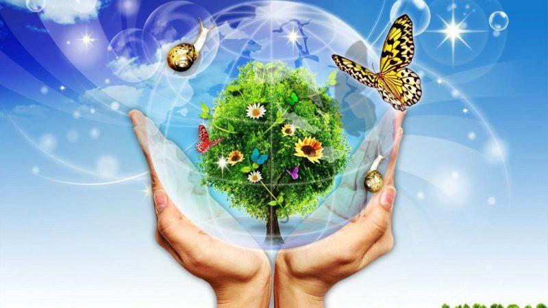 Турбуємося про довкілля: завдання з екології для дітей