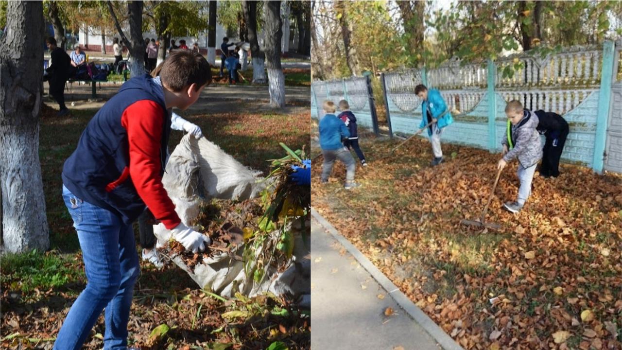 Прибирання класів і дворів: що не повинні робити українські школярі