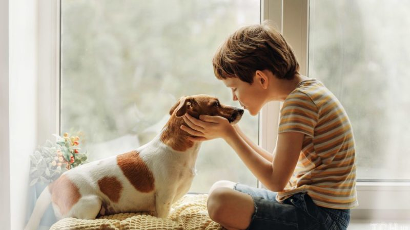 Як виховувати у дітей гуманне ставлення до тварин і чому це важливо