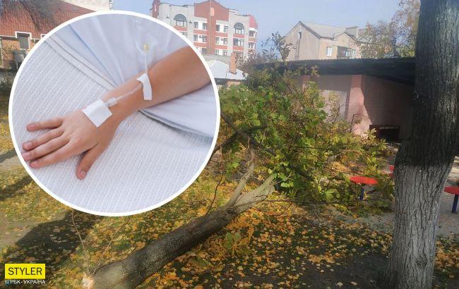 У Кременчуці в садочку на дітей завалилося дерево: 4-річна дівчинка в комі